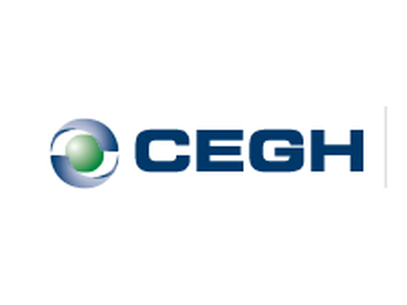 Central European Gashub AG