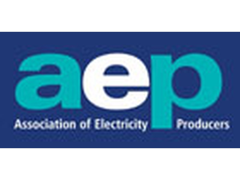 AEP (Association of Electricity Producers)