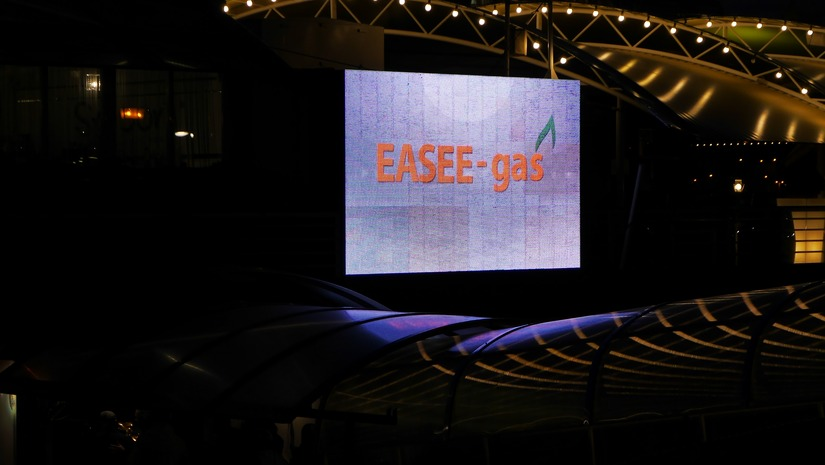 EASEE-gas 2018 GMoM